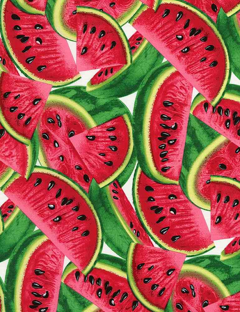 FRUIT-C1137 / MULTI / WATERMELON LARGE