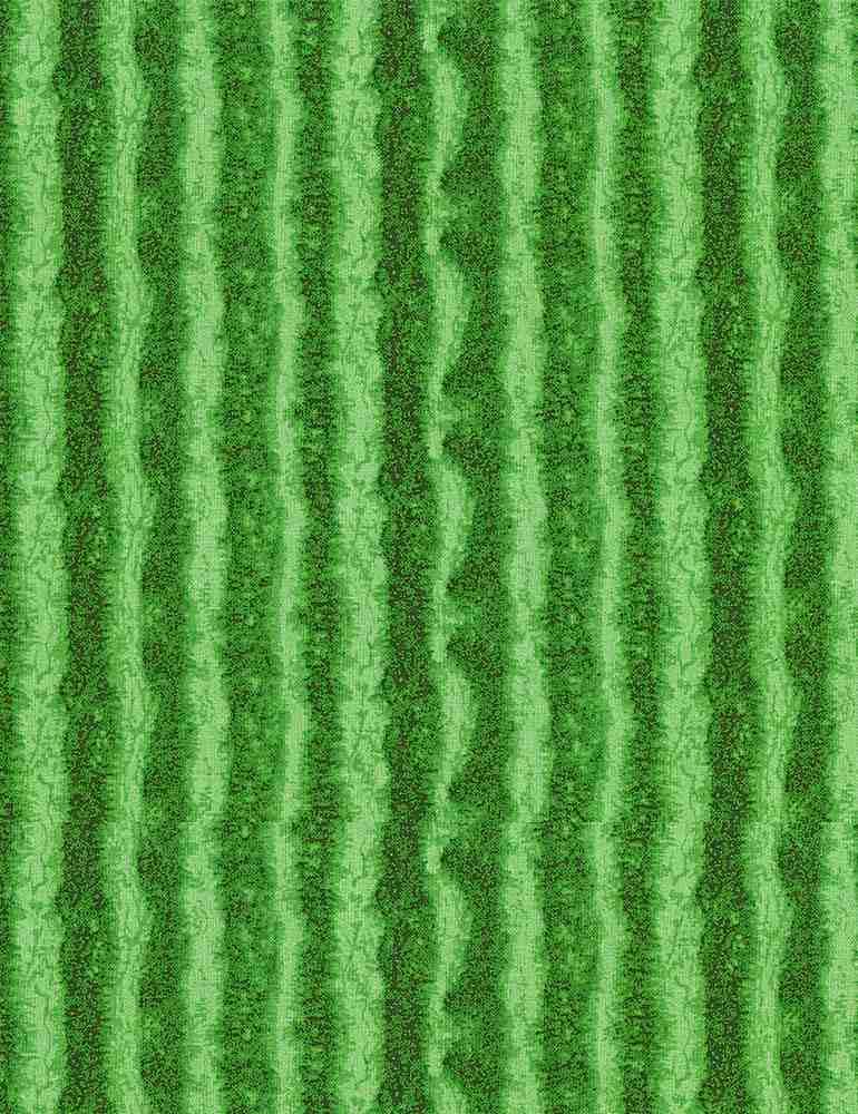 FRUIT-C1138/GREEN / WATERMELONSKIN