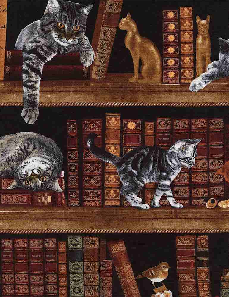 CAT-C2863 / LIBRARY / CATS IN LIBRARY