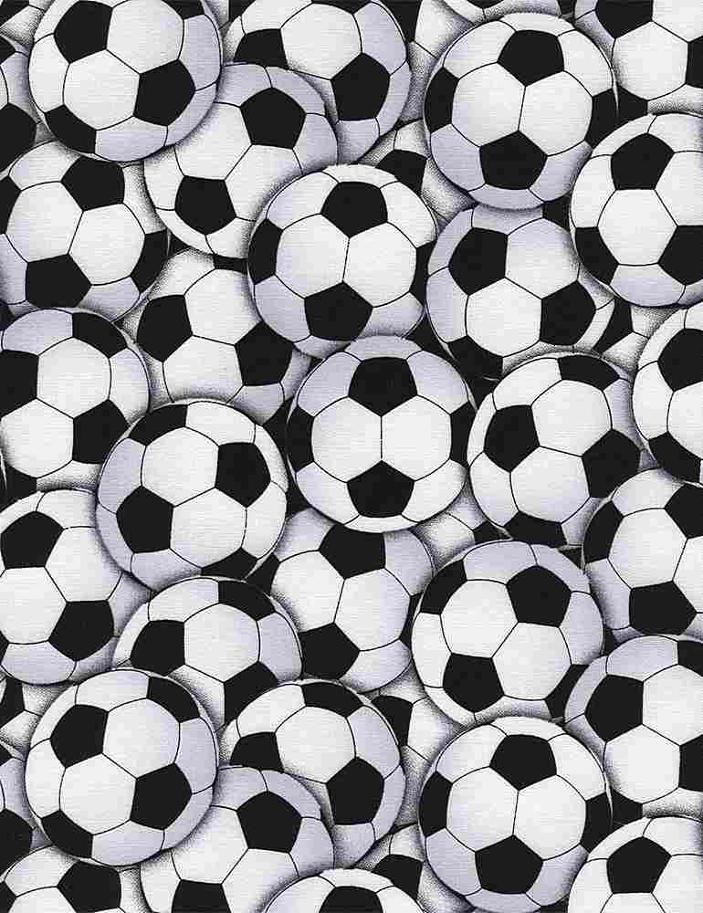 GAIL-C4820 / WHITE / PACKED SOCCER BALLS