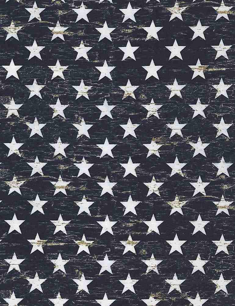 USA-C5568/NAVY / PATRIOTICSTARS