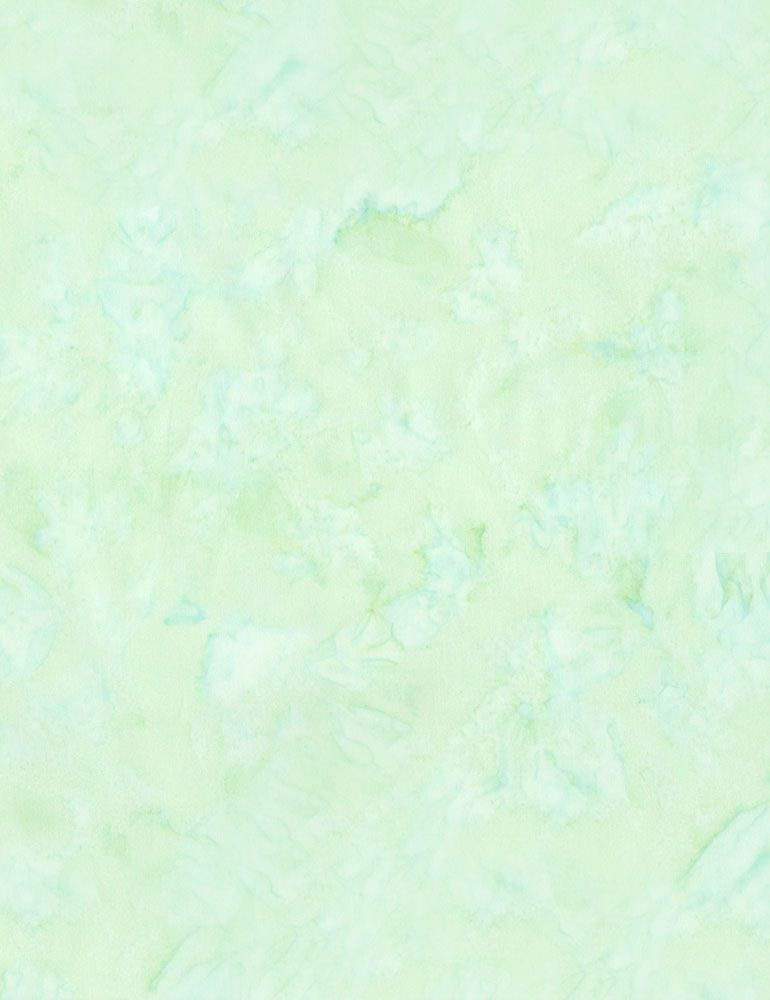 TONGA-B7900/MORNING / JAVABLENDERBASIC*W