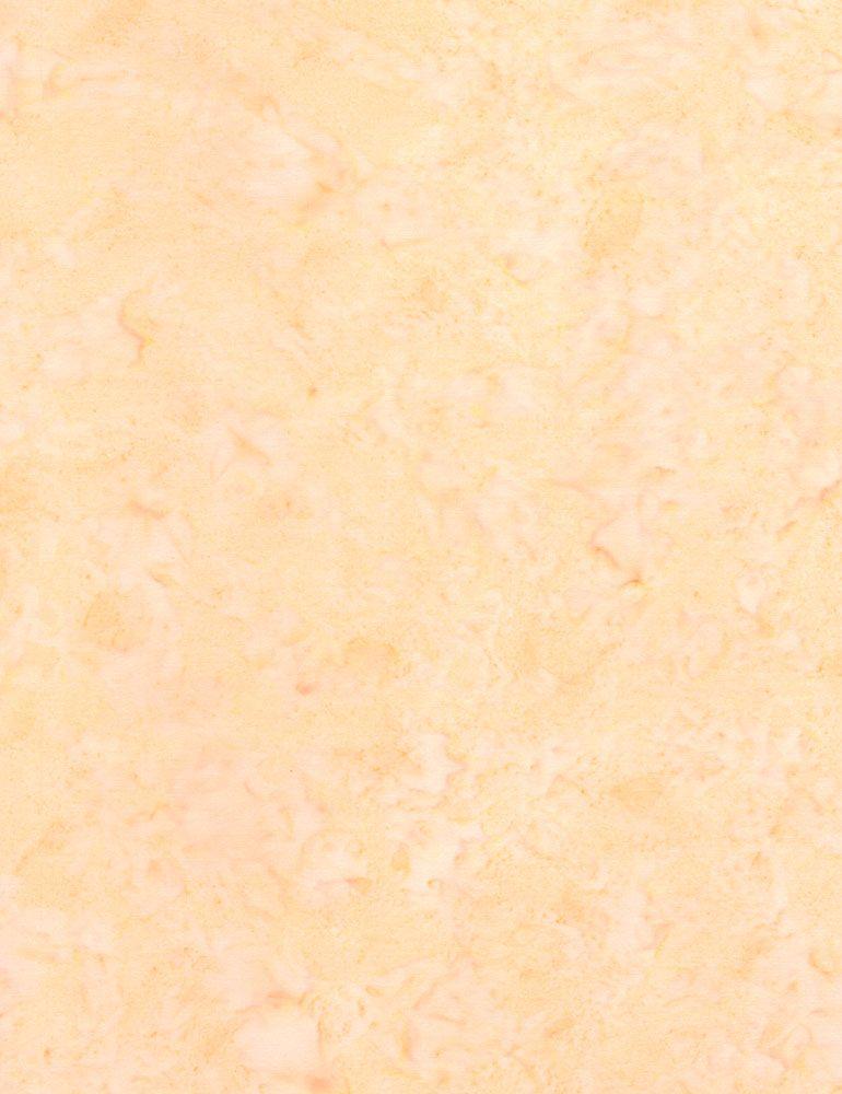 TONGA-B7900/QUIET / JAVABLENDERBASIC*W