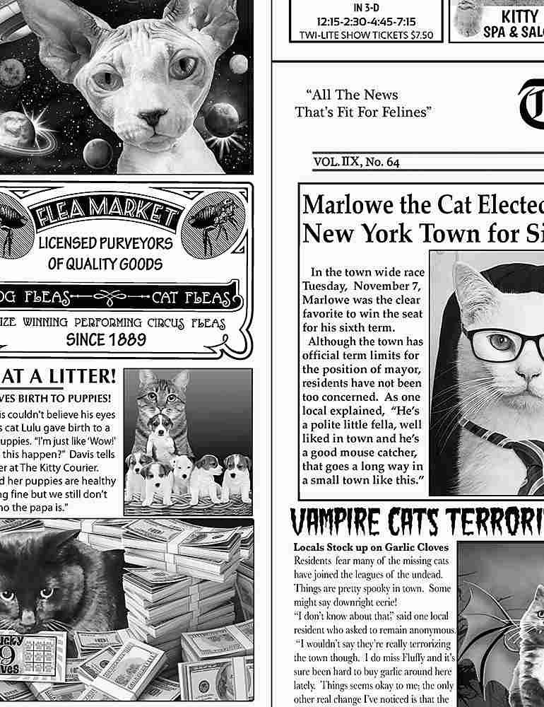 CAT-C6705 / NEWSPRINT / CAT NEWSPAPER