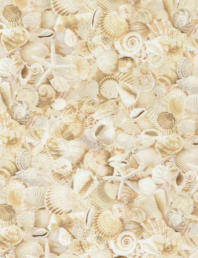 BEACH-C6743/NATURAL / PACKEDSEASHELLS