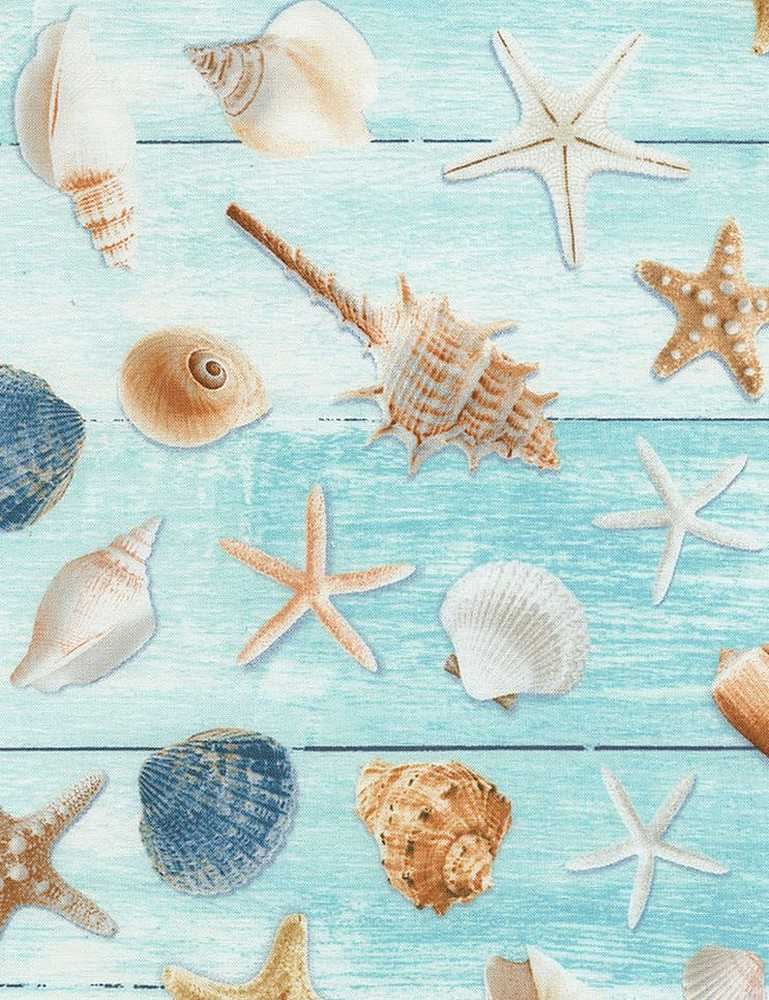 BEACH-C6744 / AQUA / ALL OVER SEASHELLS