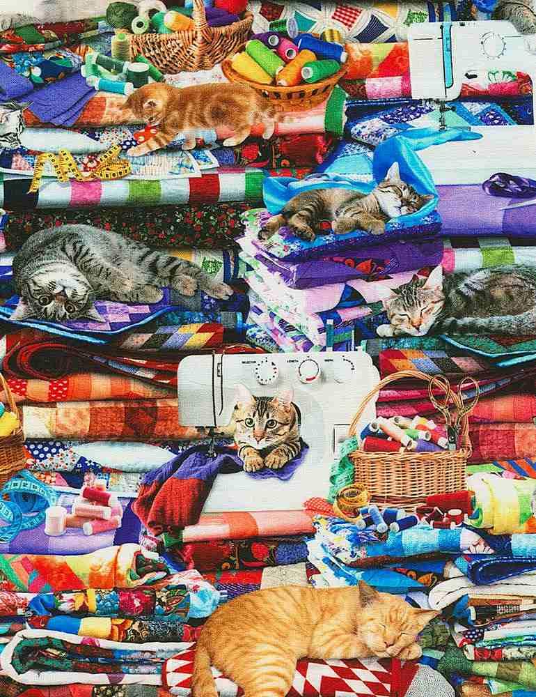 CAT-CD6878/MULTI / CATSONQUILTS