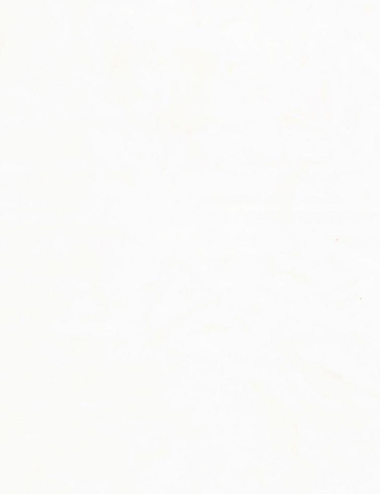 TONGA-B7900/TISSUE / JAVABLENDERBASIC*W