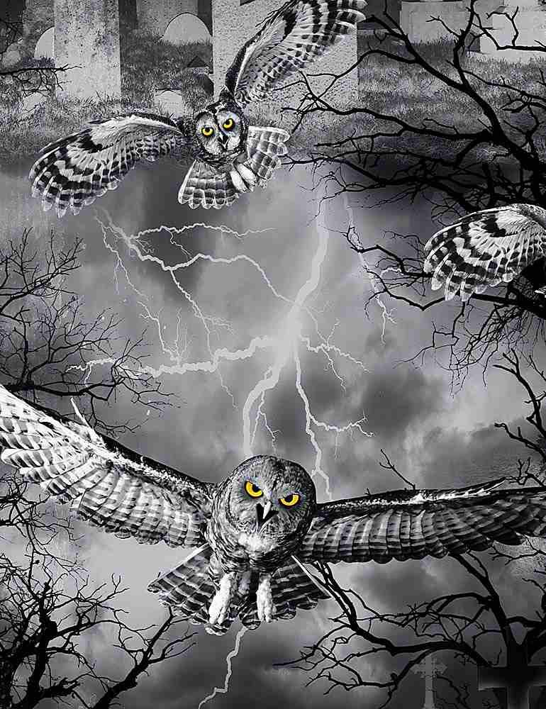 WICKED-C7023/NIGHT / OWLSINTHEGRAVEYARD