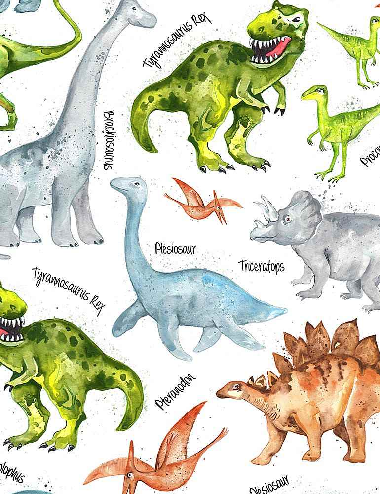 DINO-C7219 / WHITE / DINOS AND NAMES