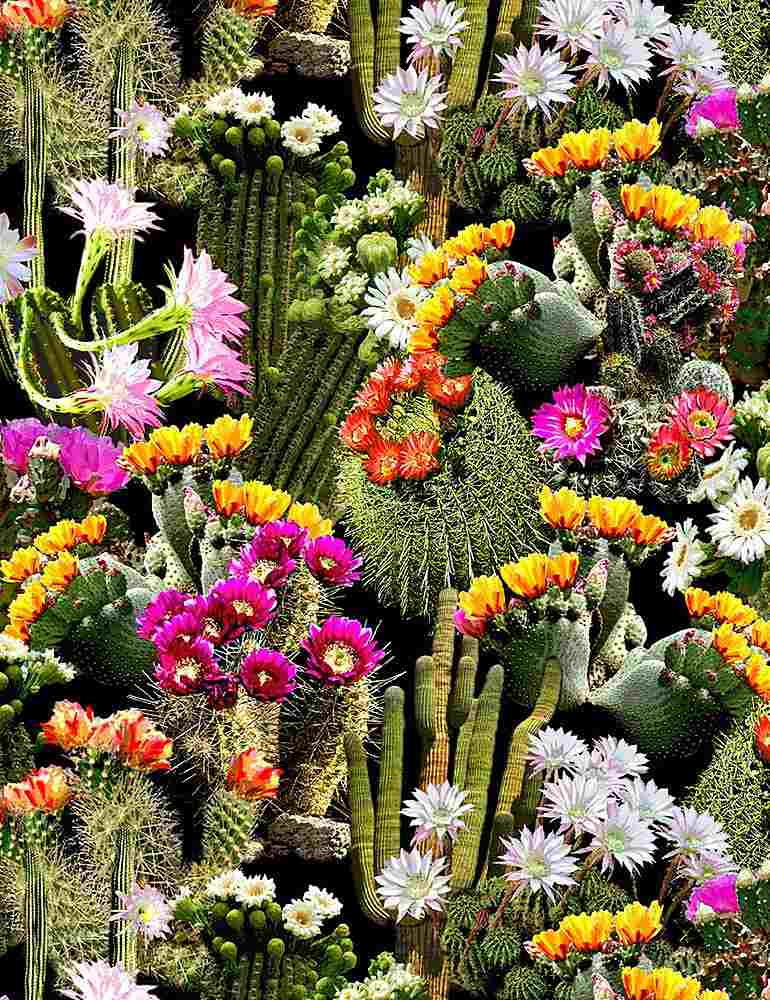 WEST-C7357 / MULTI / PACKED CACTI FLOWERS