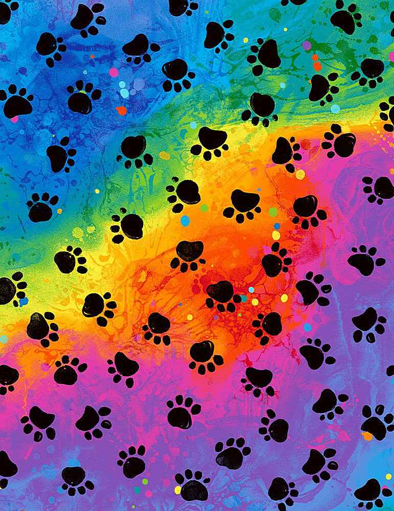 CAT-C7486 / RAINBOW / RAINBOW PAWS