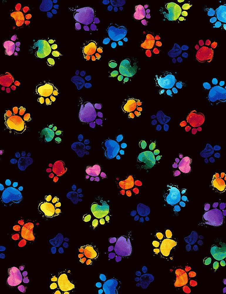 CAT-C7487 / BLACK / MULTI-COLORED PAWS