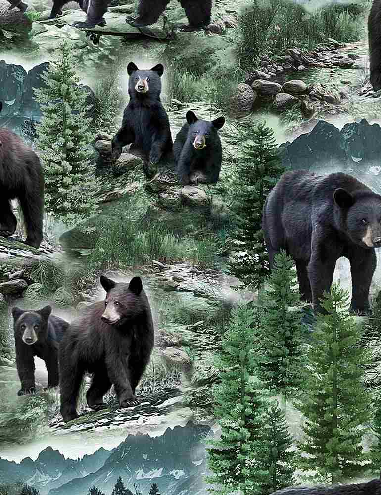 NATURE-CD7563 / MULTI / WILD BLACK BEARS