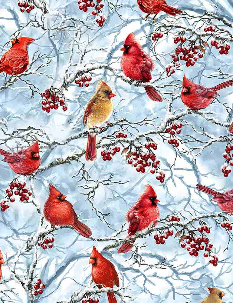 DONA-C7594 / BLUE / WINTER CARDINALS
