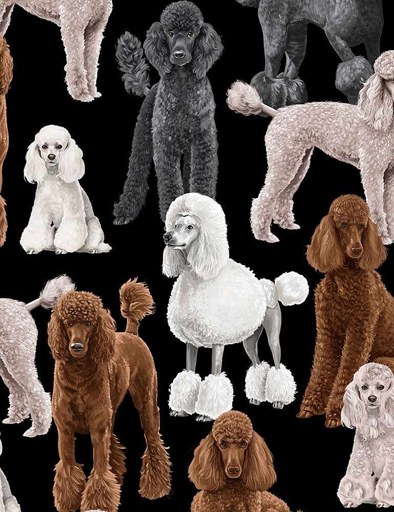 GM-C7527 / BLACK / POODLES