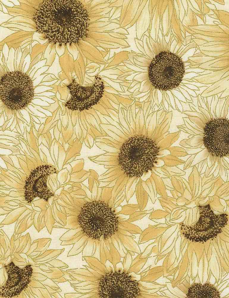 HARVEST-CM7695 / CREAM / PACKED CREAM SUNFLOWERS
