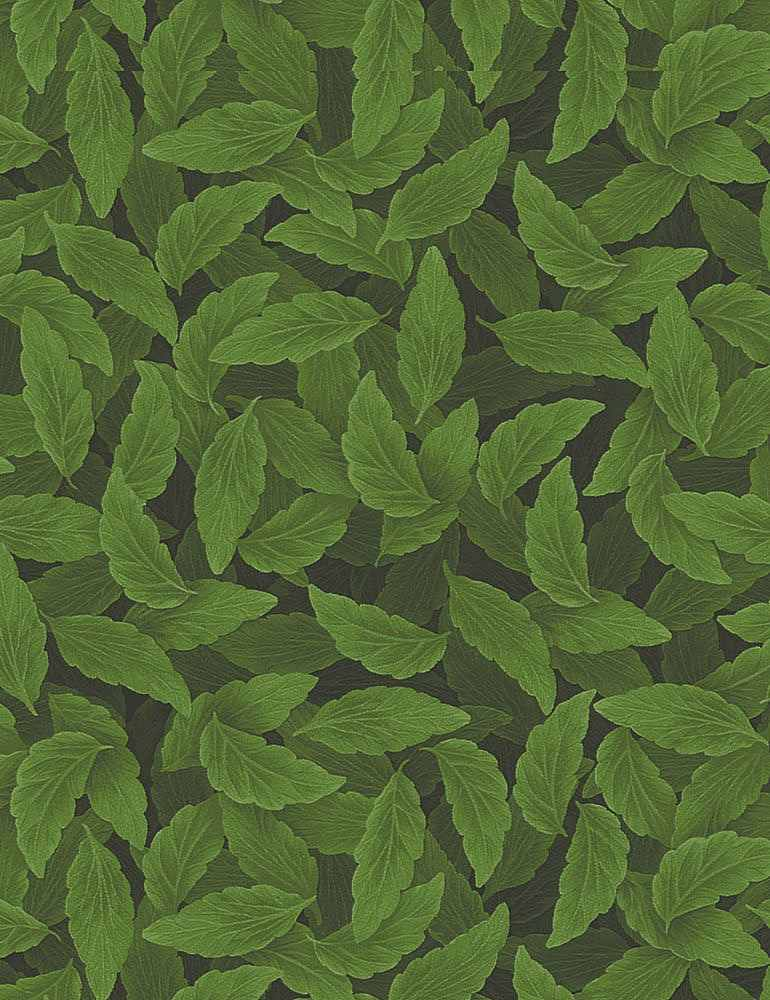 NATURE-C7724/GREEN / PACKEDPANSYLEAVES