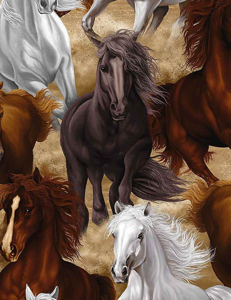 HORSE-C7776/MULTI / RUNNINGHORSES