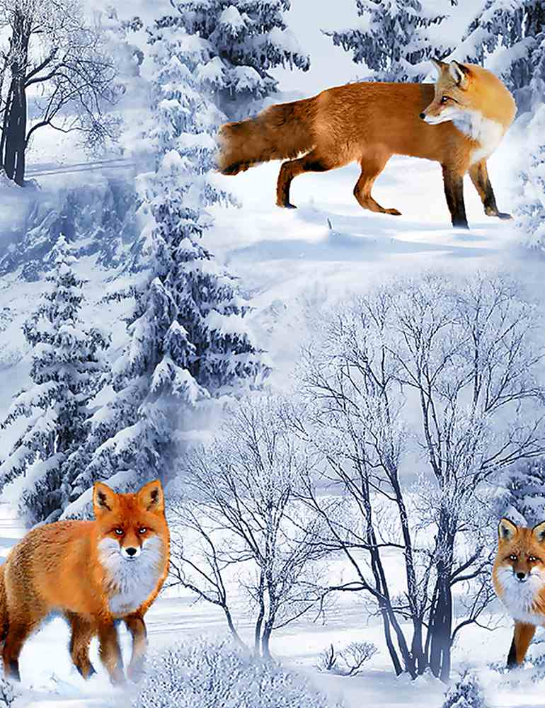 WINTER-C7848 / BLUE / WINTER FOXES