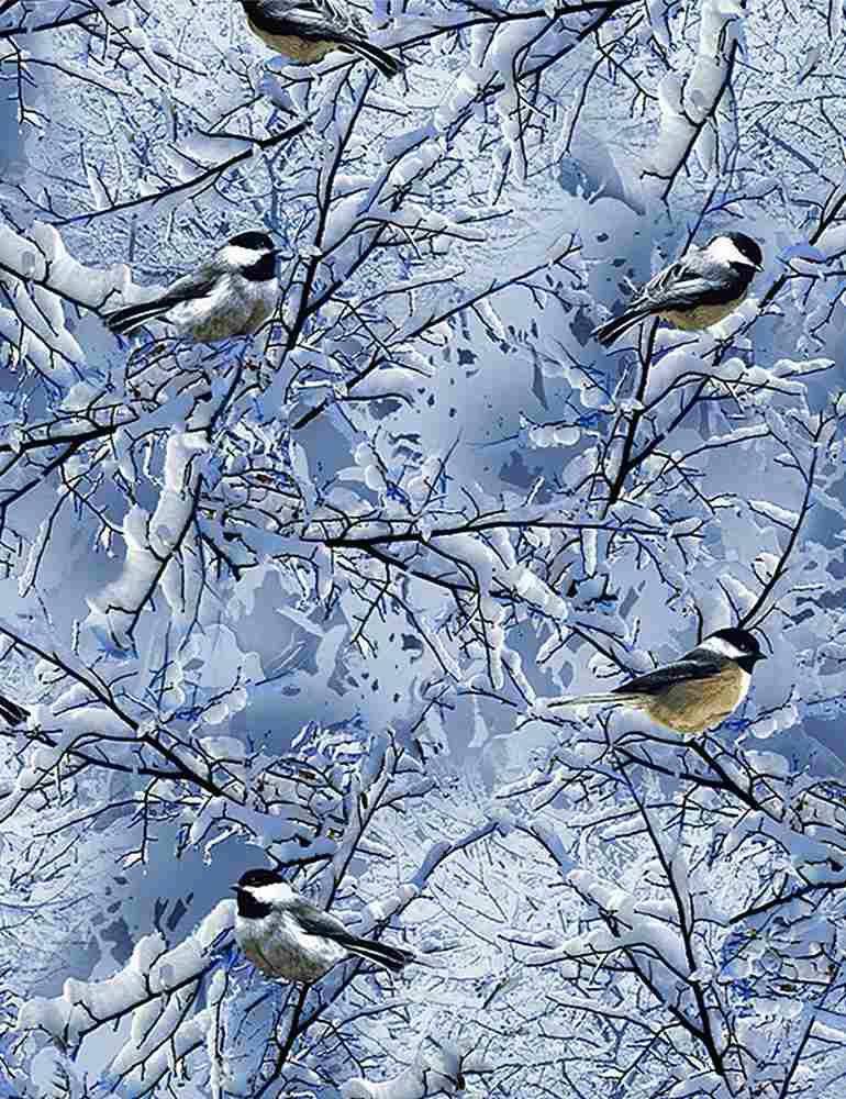 BIRD-C7850/BLUE / WINTERCHICKADEES