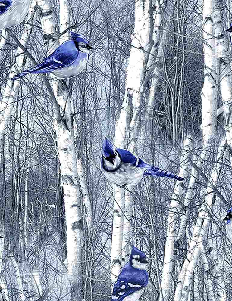 BIRD-C7851 / BLUE / WINTER BLUE JAYS