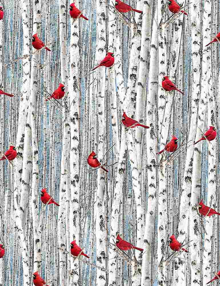 NATURE-C7870 / WHITE / RED CARDINALS ON BIRCH TREES
