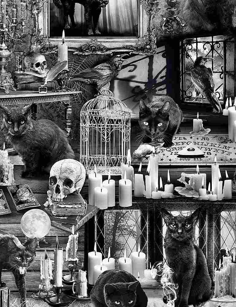 WICKED-C7882 / BLACK / BLACK CATS IN HAUNTED HOUSES