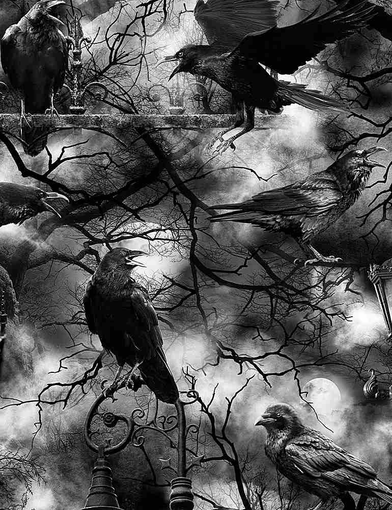 WICKED-C7885 / BLACK / SPOOKY CROWS