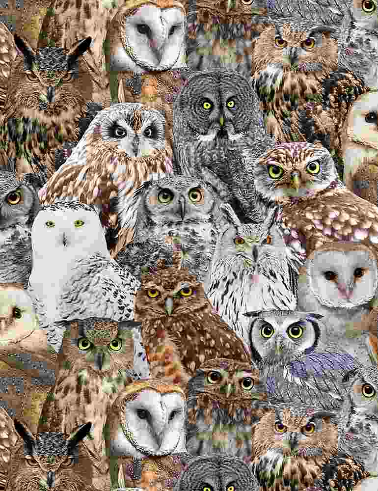 BIRD-C7947 / MULTI / PACKED REALISTIC OWLS