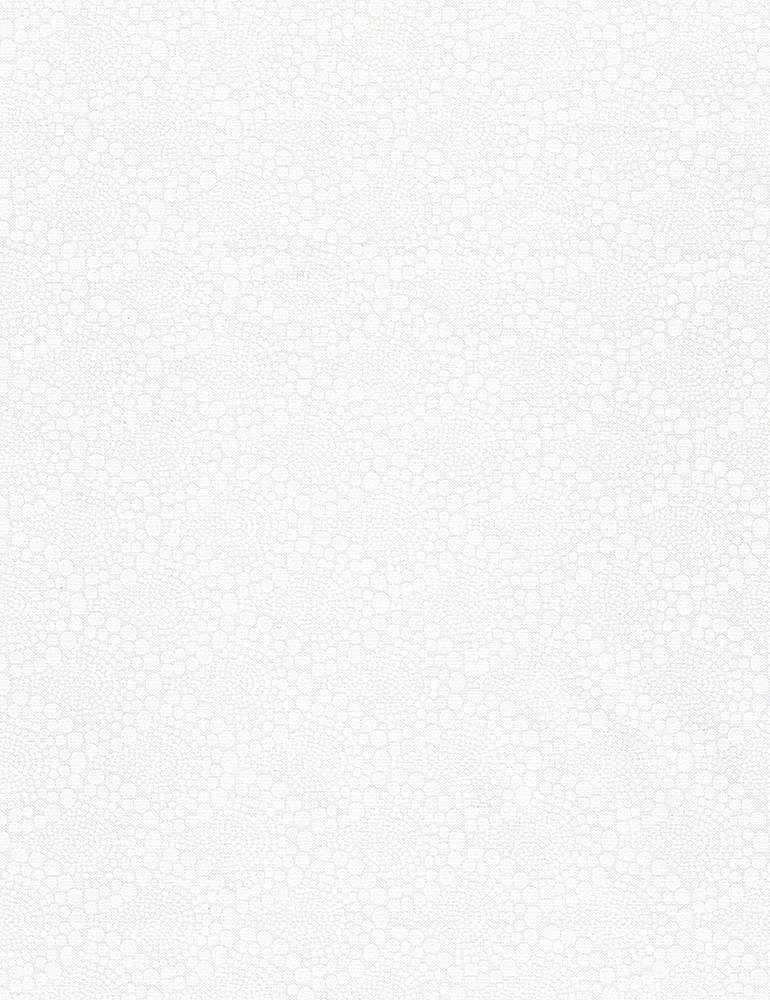 HUE-C8192/WHITE / DOTTEDSCALLOPEDPATTERN