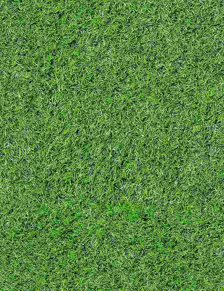 GAIL-C8343/GREEN / FOOTBALLFIELDGRASS