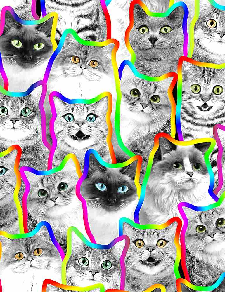 CAT-C8585 / MULTI / NEON OUTLINE BLACK AND WHITE CATS