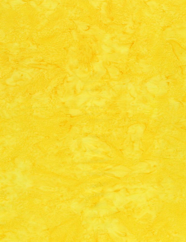 TONGA-B7900/SHINE / JAVABLENDERBASIC*W