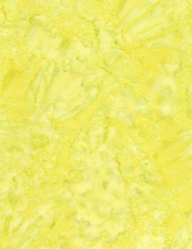 TONGA-B7900/LASER / JAVABLENDERBASIC*W