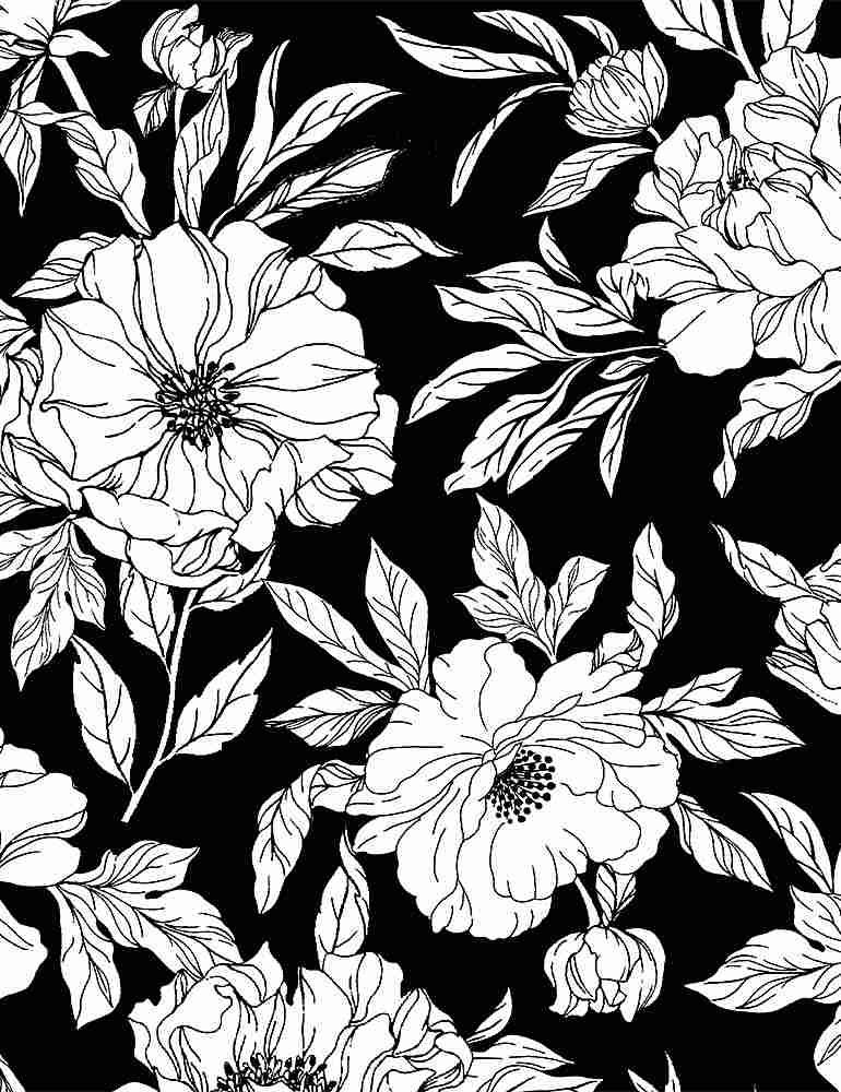 INK-C8726/BLACK / DRAWNTOSSEDFLORALS