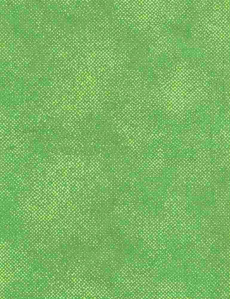 SURFACE-C1000/GREEN / SURFACESCREENTEXTURE