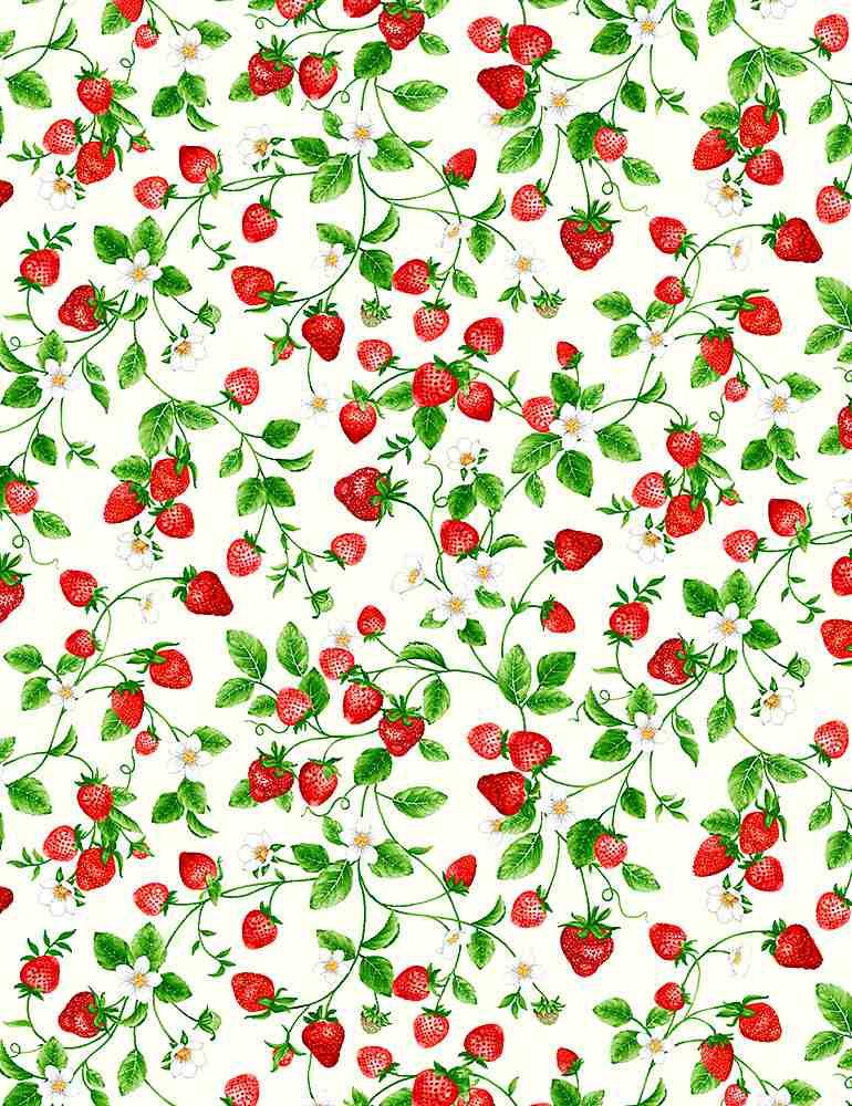 FRUIT-C1049/CREAM / SMALLSTRAWBERRIESONVINES