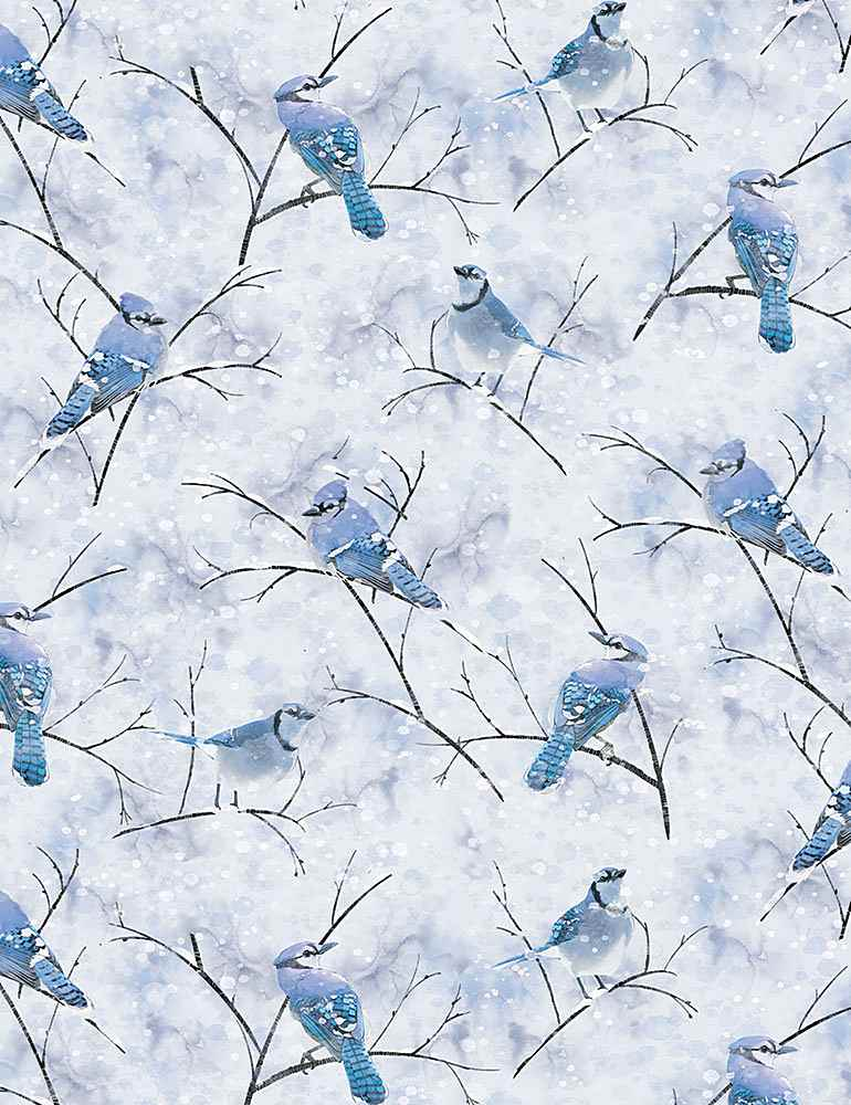 THOMAS-CD1218/BLUE / BLUEJAYBIRDSINWINTER