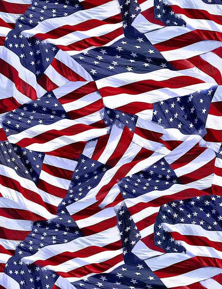 USA-C1339/USA / USAFLAGS