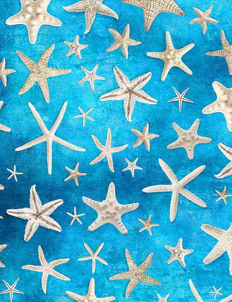 BEACH-C1238/BLUE / STARFISH