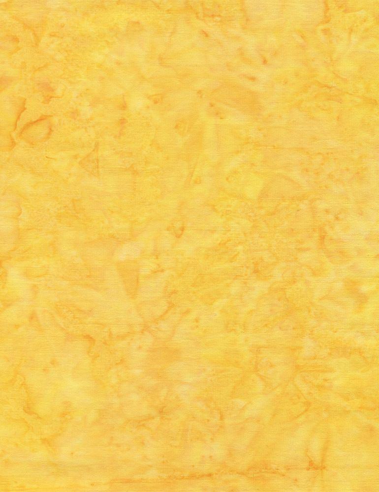 TONGA-B7900/DAFFODIL / JAVABLENDERBASIC*W