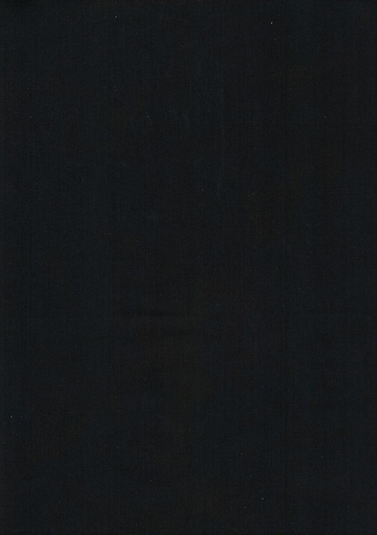 TONGA-B7900/ESPRESSO / JAVABLENDERBASIC*W