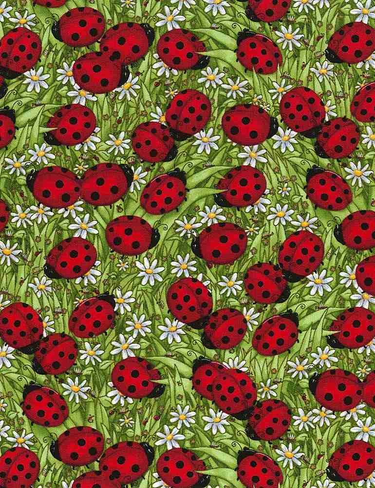 DEBI-C1175 / GREEN / LADYBUGS